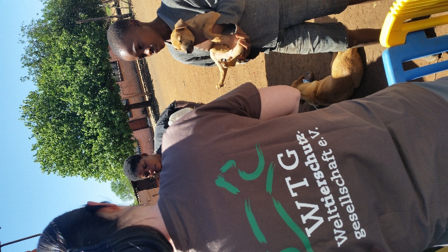 wtgfree-state-–-january-4th-to-16th-2016-mass-sterilisation-and-rabies-campaign-international-student-project