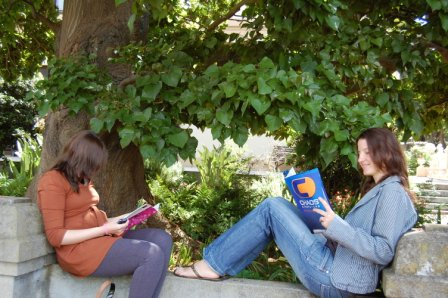 Students enjoy studying together in the garden